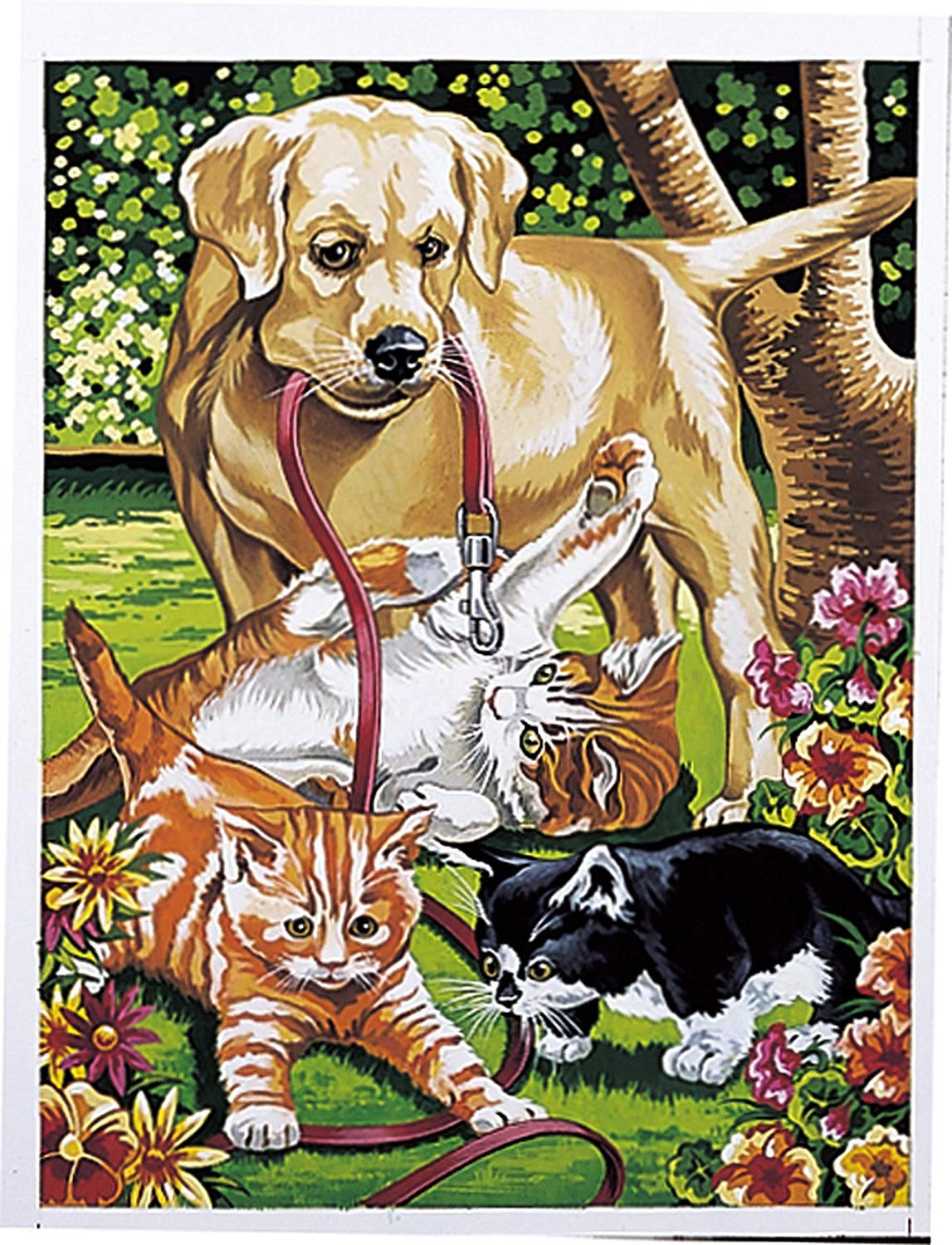 Dog and Kittens, Medium Paint by Number