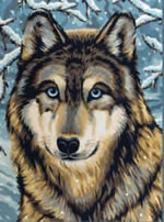 Wolf, Medium Paint by Number