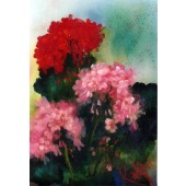 Bob Ross Floral Packet - Geraniums