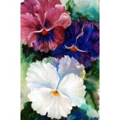 Bob Ross Floral Packet - Large Pansies