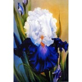Bob Ross Floral Packet - Iris