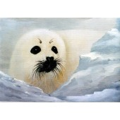 Bob Ross Wildlife Packet - Baby Seal