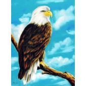 Bob Ross Wildlife Packet - Eagle
