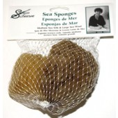 Susan Scheewe Set of 2 Sea Sponges