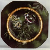 Chestnut-Sided Warbler/Yellow Buckeye, Sherry Nelson Packet