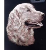 Reeves Copperfoil - Retriever Portrait