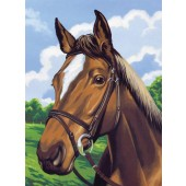Horses Head, Medium Paint by Number