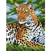 Leopard, Medium Paint by Number