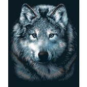 Wolf Portrait - Reeves Scraperfoil